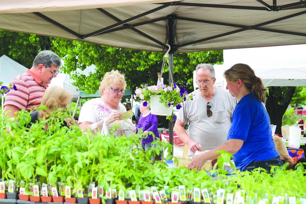 The Wayne Farmers Market will be open every Wednesday from 3-7 p.m. at Goudy Park, behind Wayne City Hall, 3355 S. Wayne Road until Oct. 29.
