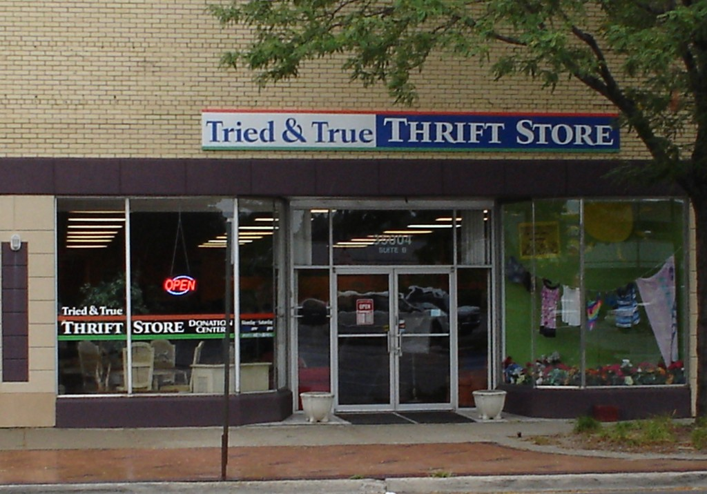 Tried & True Thrift Store, 35004 W. Michigan Ave, bring vocational opportunities and more to individuals with disabilities.